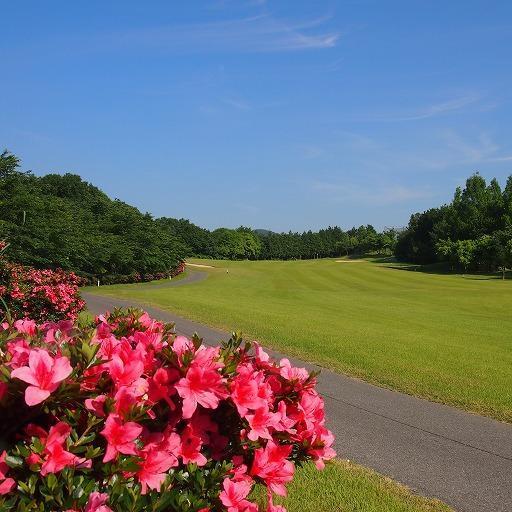 春のイチコー会ゴルフコンペを開催しました。